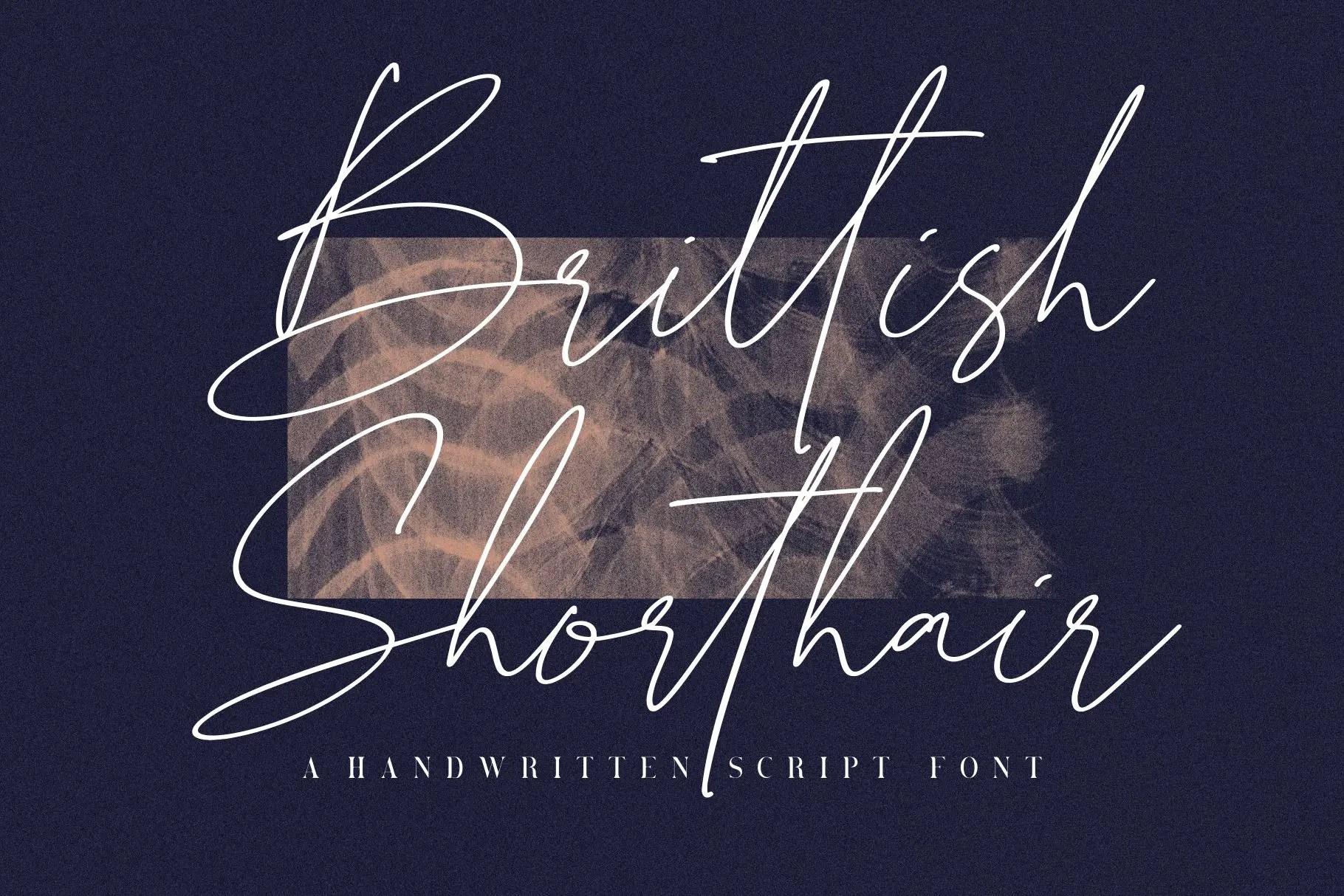 Brittish Shorthair Script -1