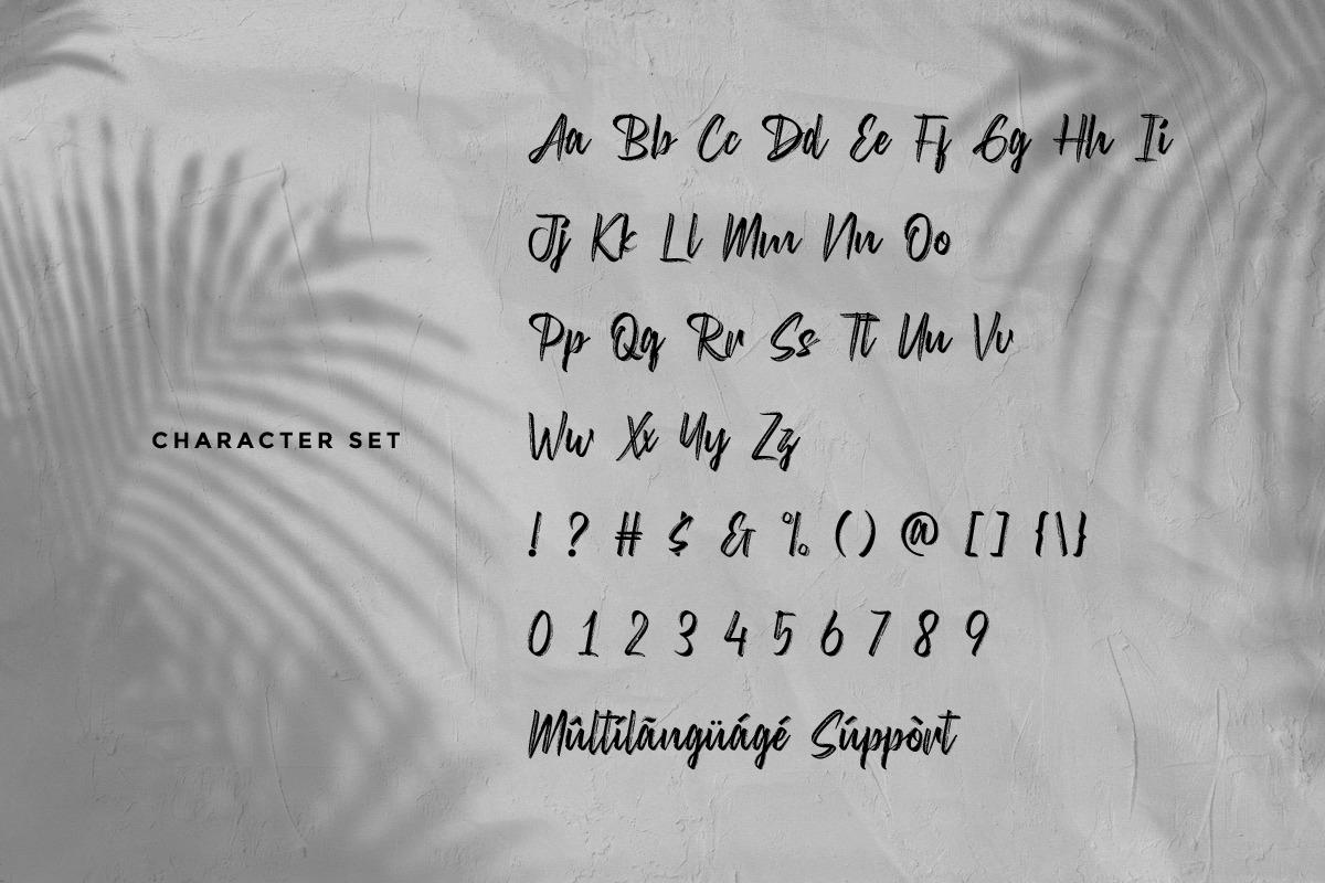 DiswatikaScript Brush Font -3