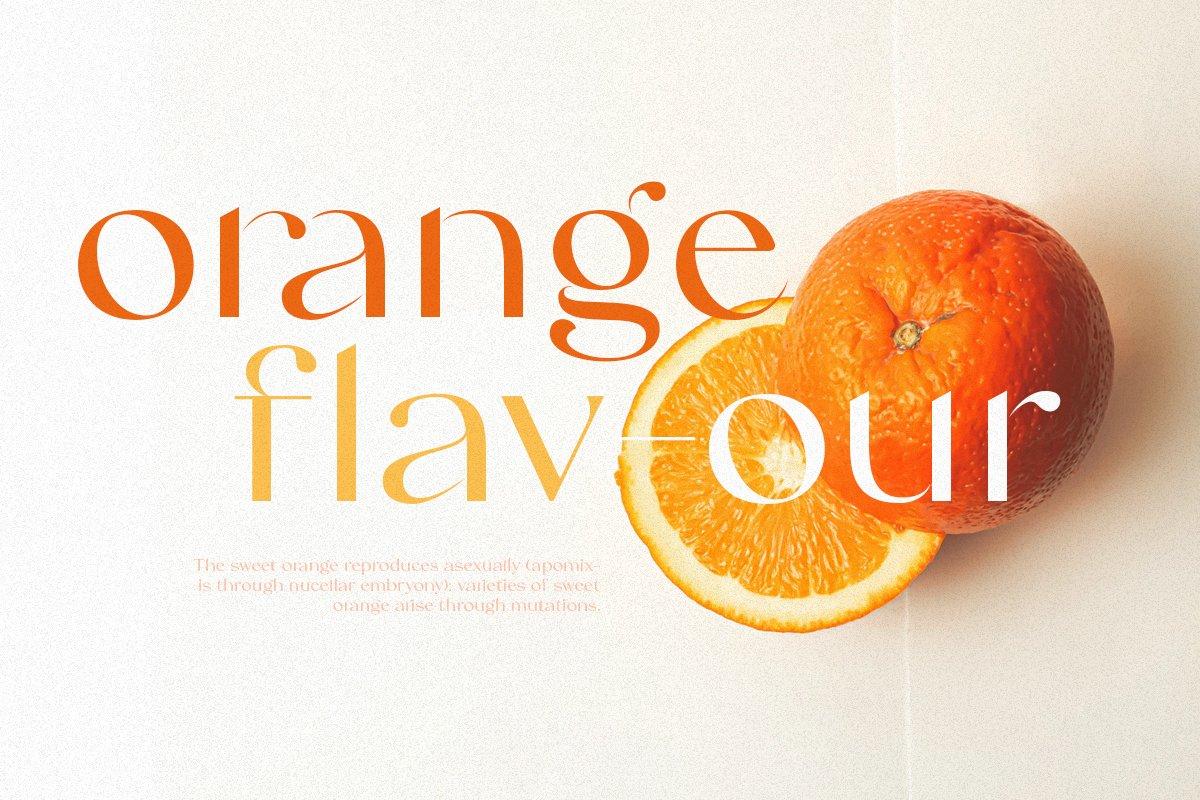 Swifted Chic & Stylish Sans Font -2