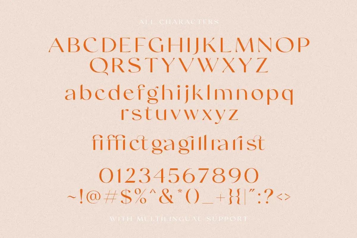 Swifted Chic & Stylish Sans Font -3