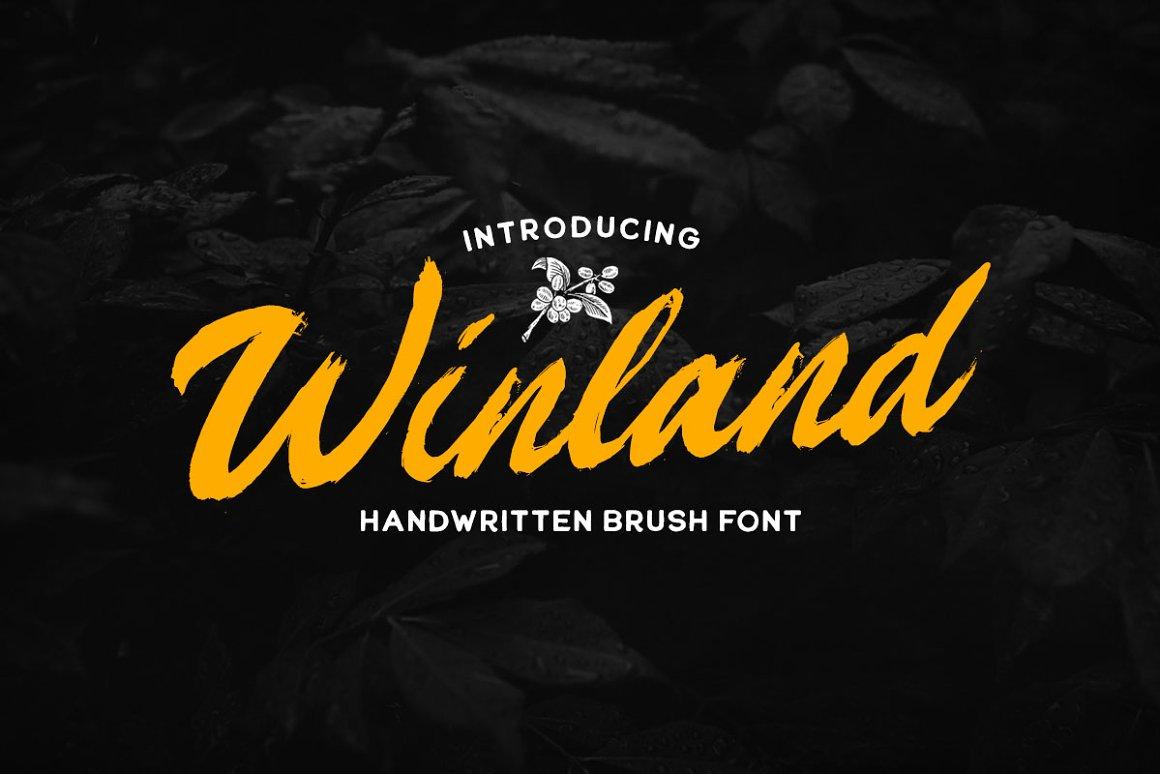 Winland Handwritten Brush Font -1