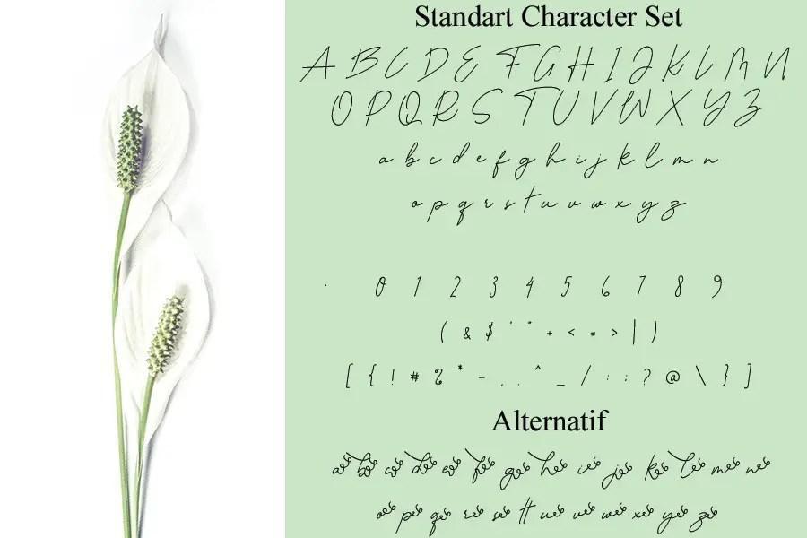 Autobiography Signature Script Font -2