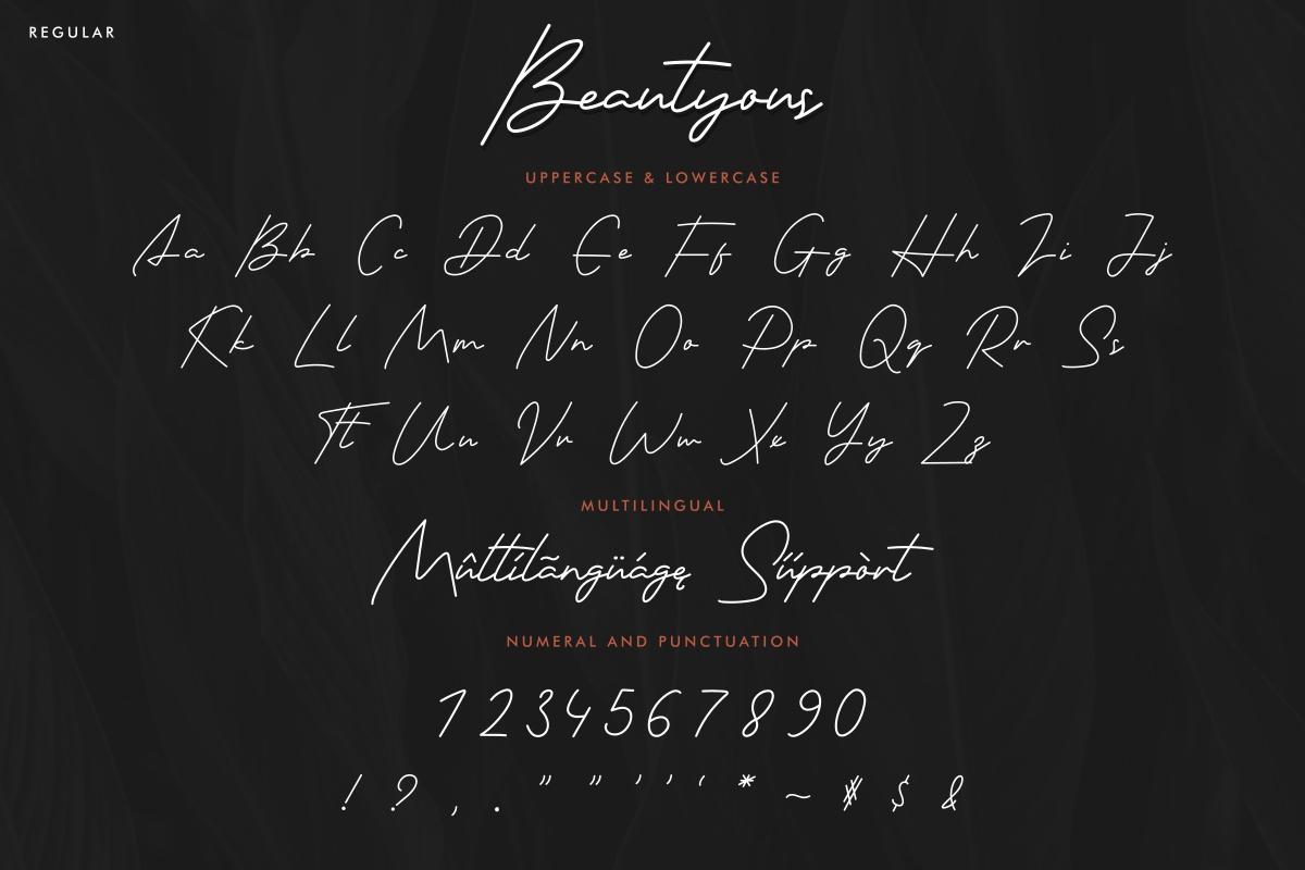 Beautyous Signature Script Font -2