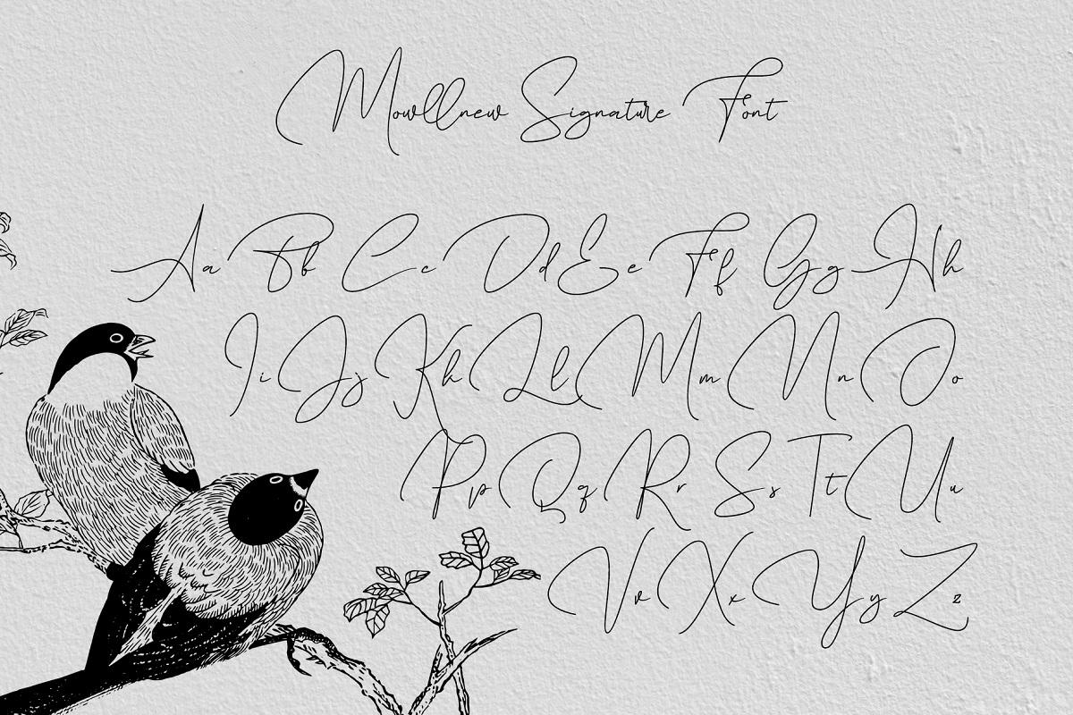 Mowllnew Handwritten Font -3