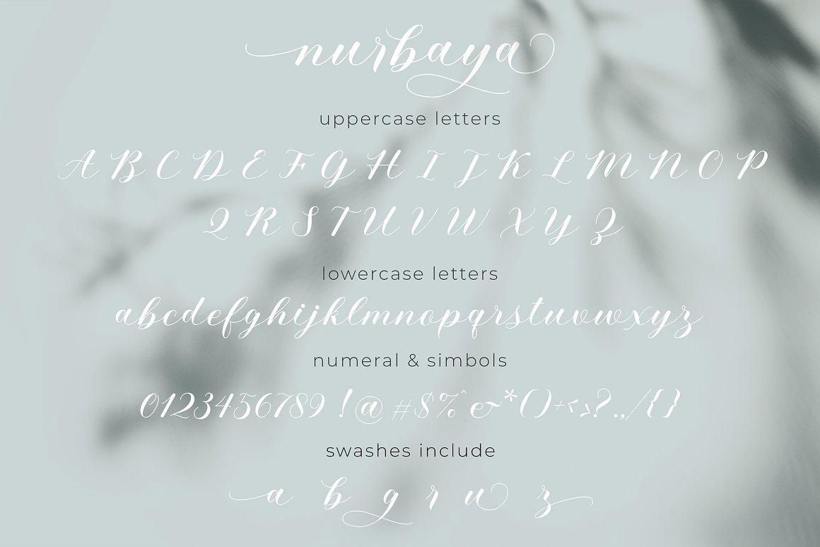 Nurbaya Modern Calligraphy Font -3
