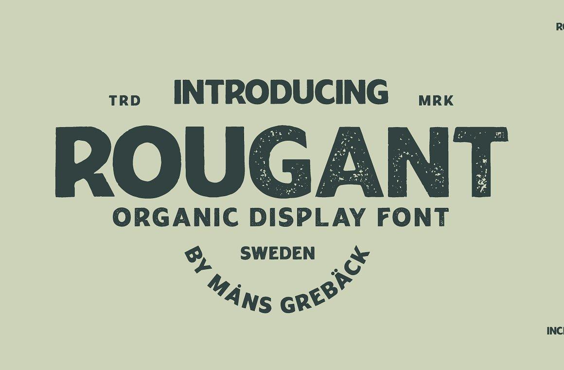 Rougant Organic Display Font -1
