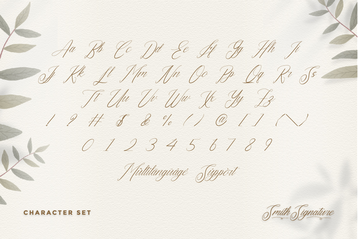Smith Signature Calligraphy Font -3