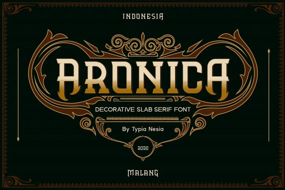 Aronica Slab Serif Font -1