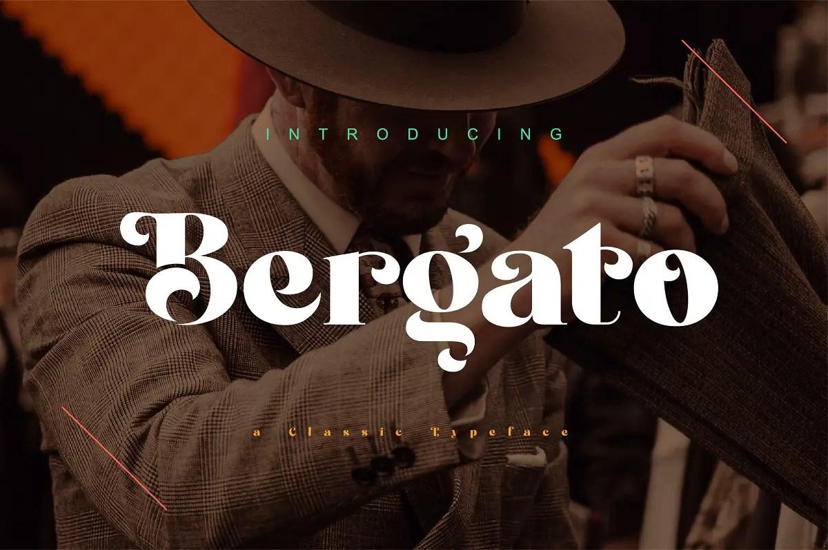 Bergato Serif Font -1