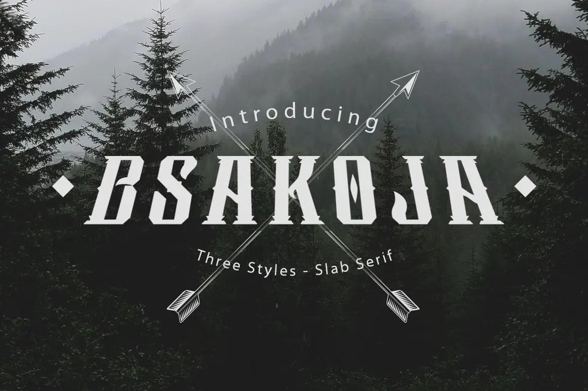 Bsakoja Slab Serif Font -1