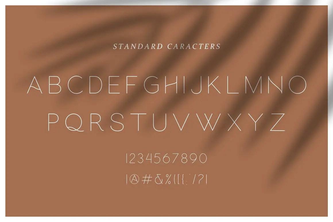 Hello Galleria Script Sans Font Duo -3