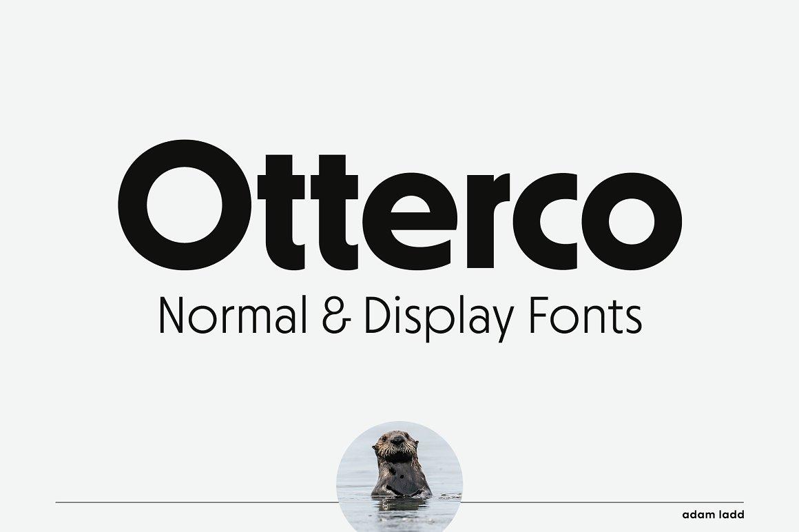 Otterco Sans Serif Font Family -1