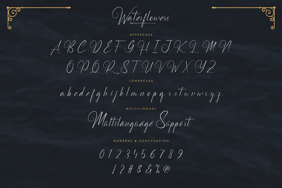 Waterflowers Calligraphy Script Font -3
