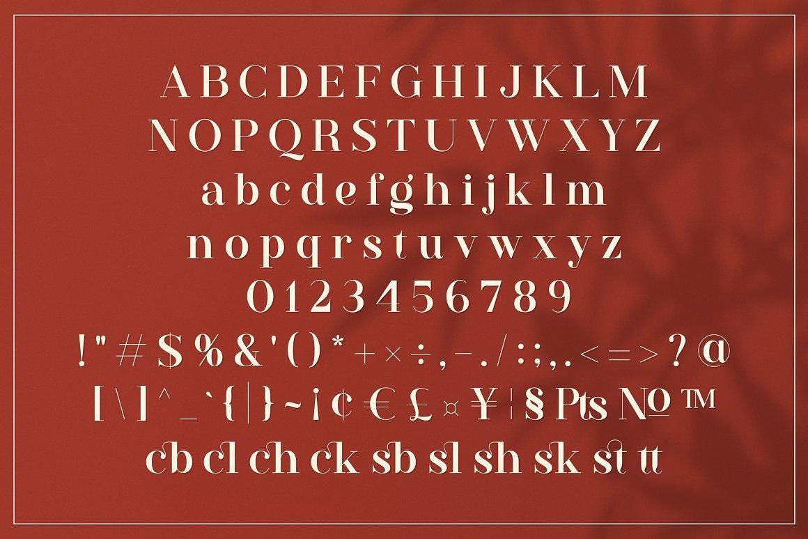 Westack Ligature Serif Font -3
