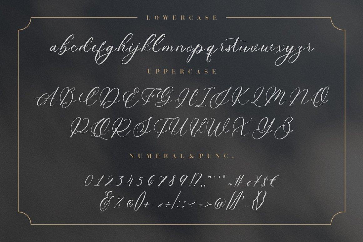 Wyattruly Luxury Script Font -3