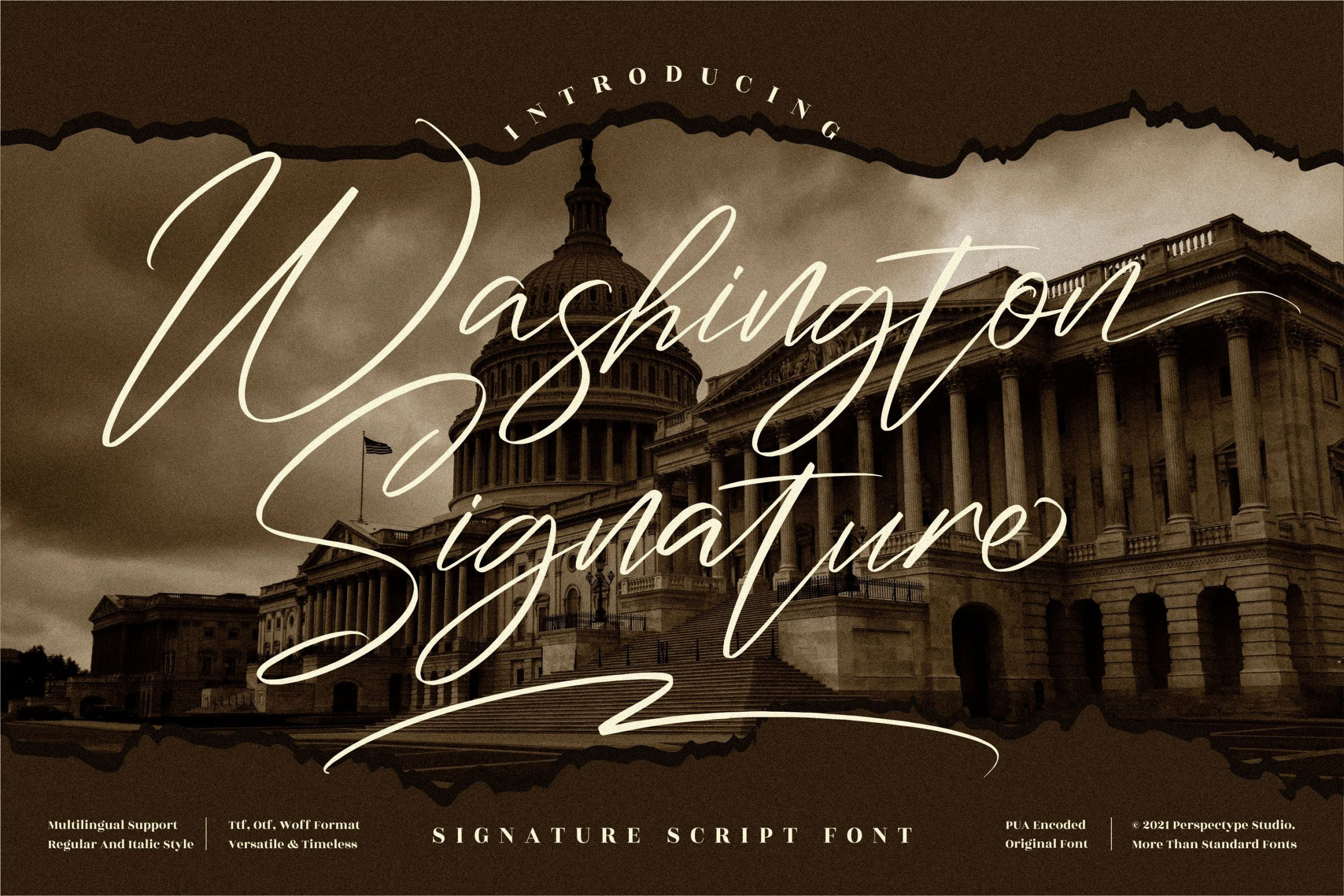 Washington Signature Script Font -1