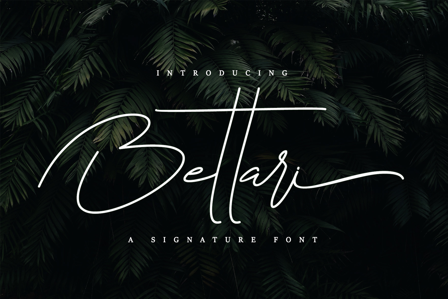 Bettari Beautiful Handwritten Font -1