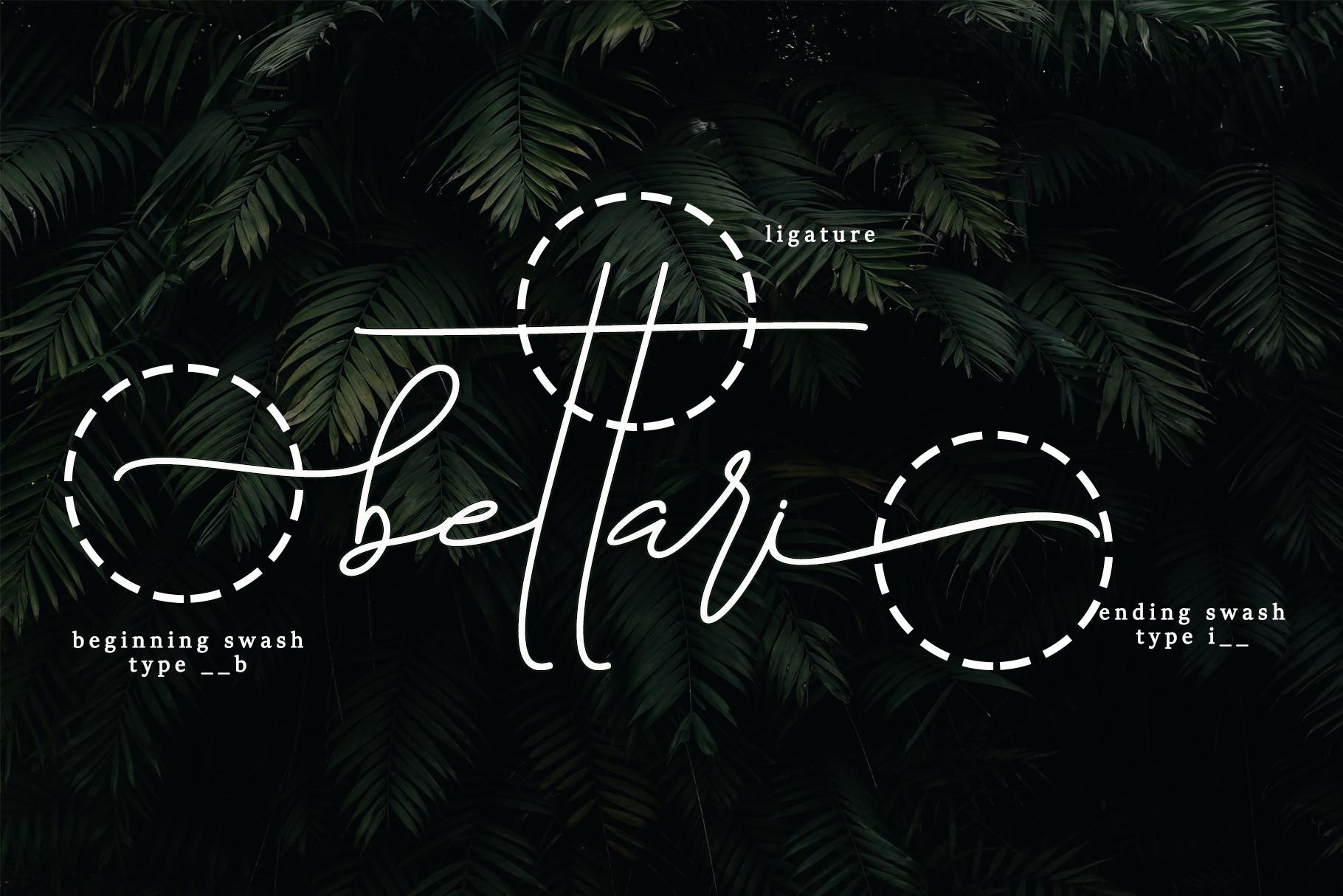 Bettari Beautiful Handwritten Font -2
