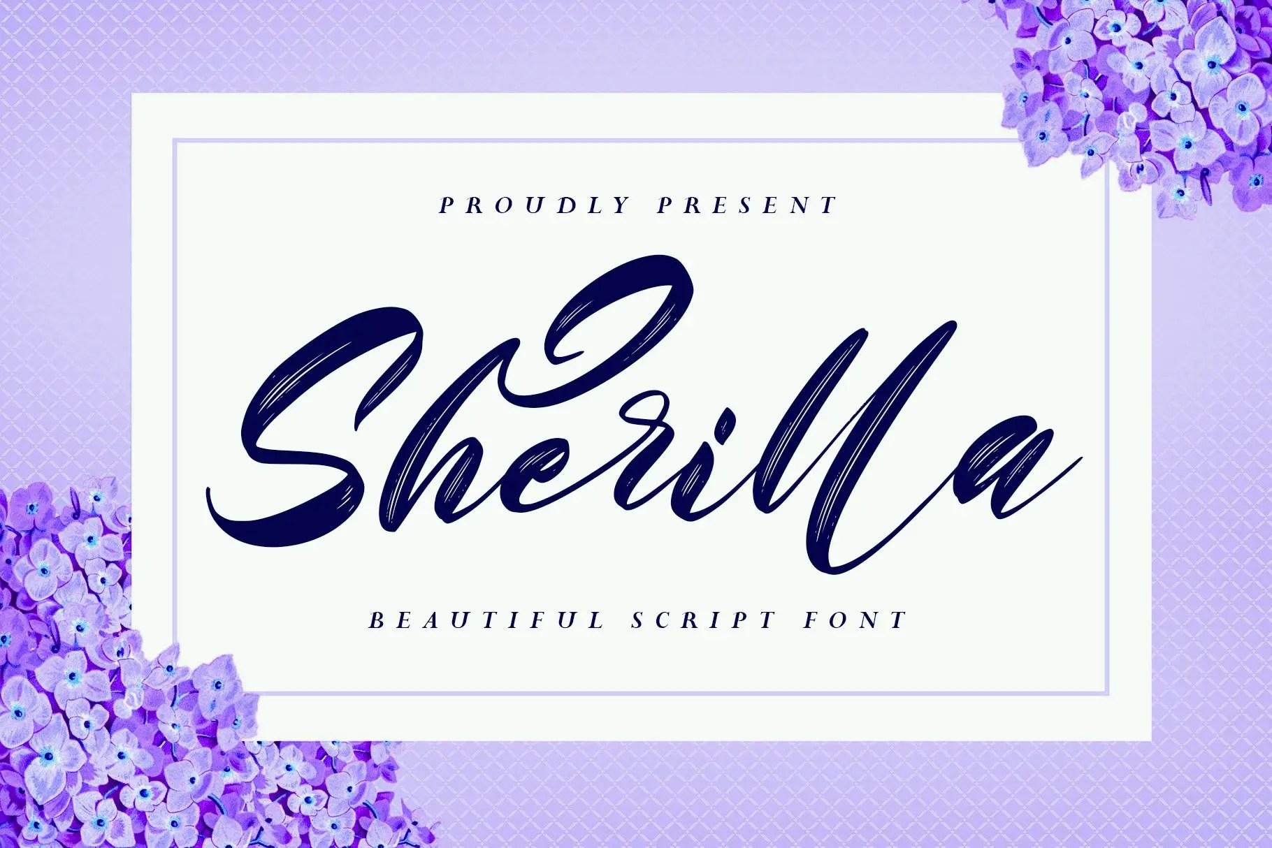 Sherilla Modern Brush Font -1