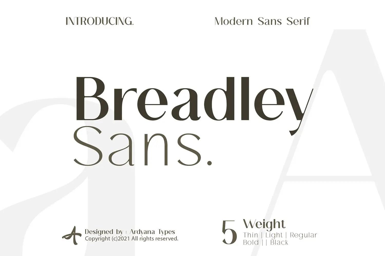 Breadley Sans Bold Sans Serif Font -1