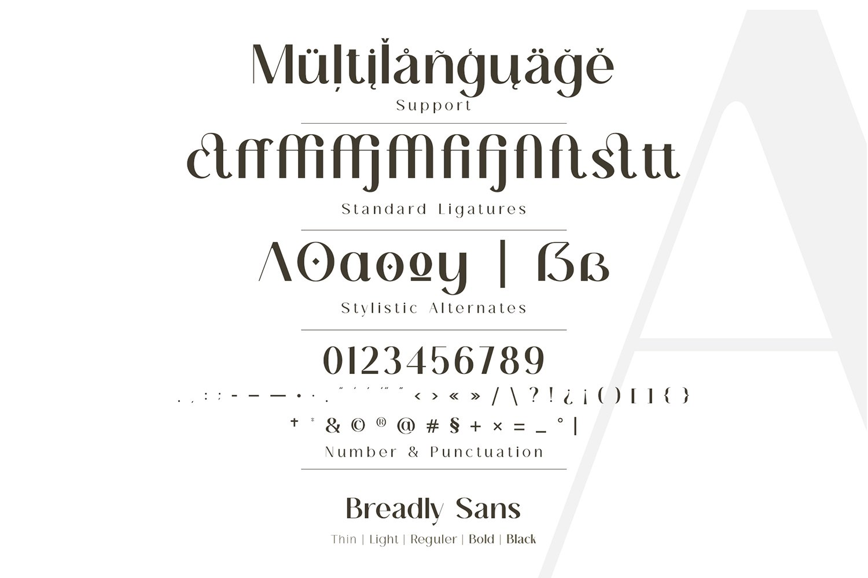 Breadley Sans Bold Sans Serif Font -3