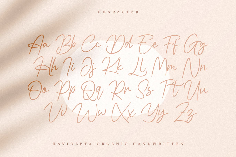 Havioleta Organic Handwritten Font -2
