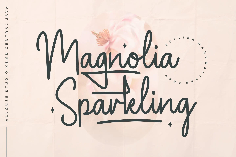 Magnolia Sparkling Handwritten Font -1