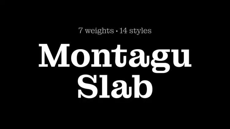 MontaguSlab Serif Font Family -1