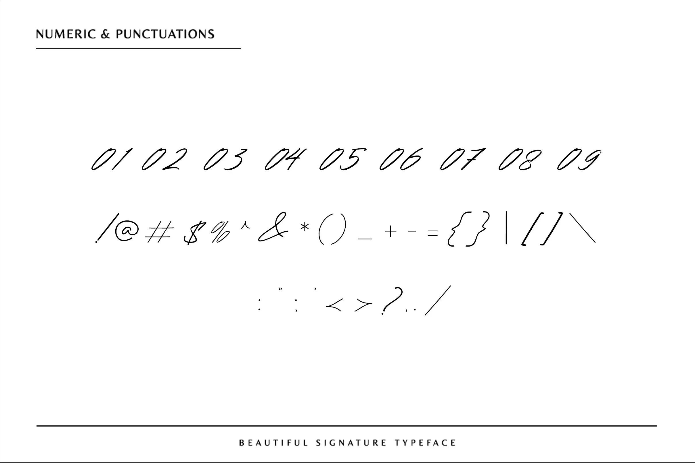 Renature Signature Script Font -3
