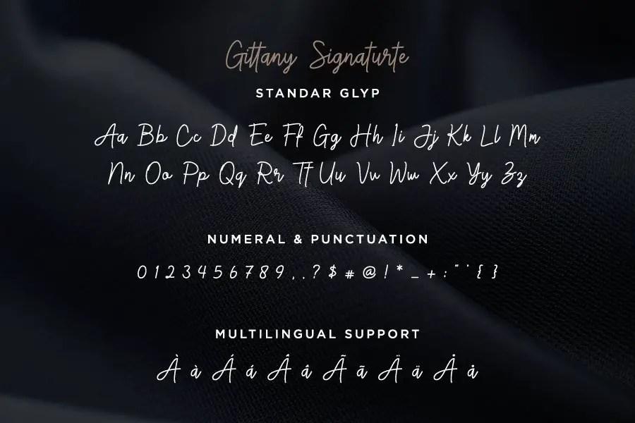 Gittany Signature Bold Script Font -3