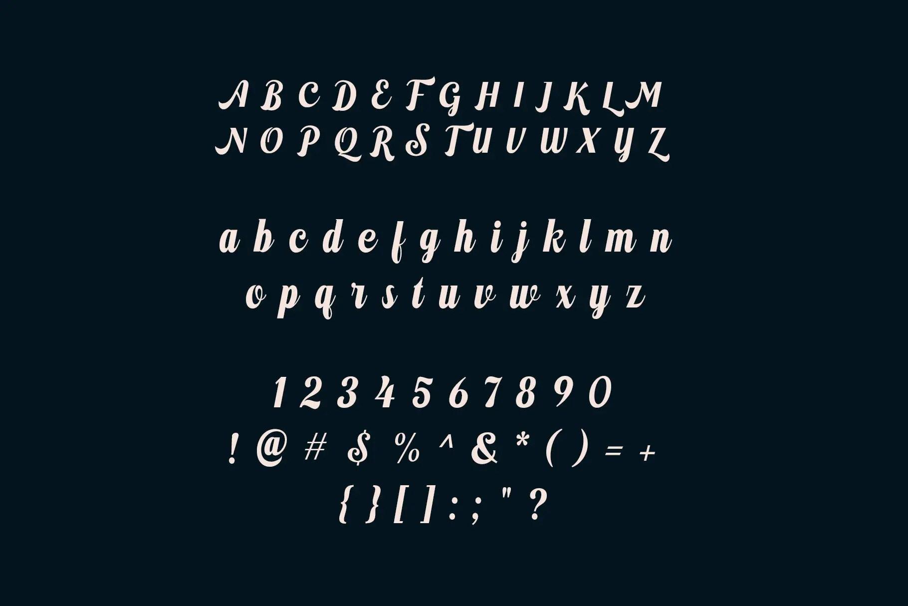 Brunhilde Bold Script Font -3