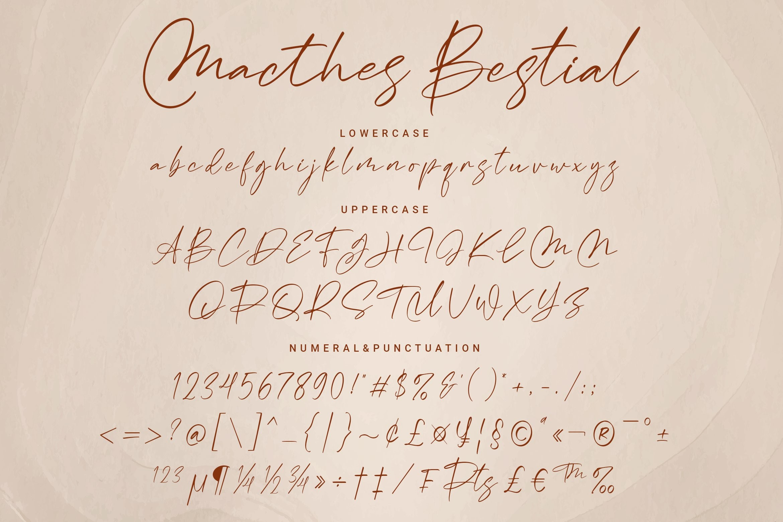 Macthes Bestial Handwritten Font -3