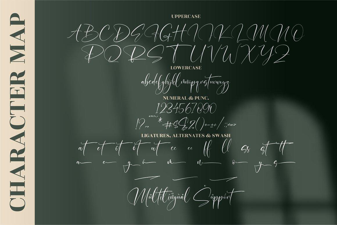 Malistera Signature Script Font -3