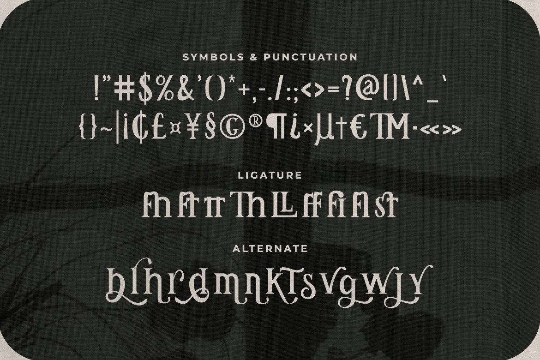 Remily ClassySerif Font -3