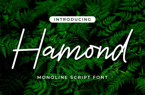 Hamond Font