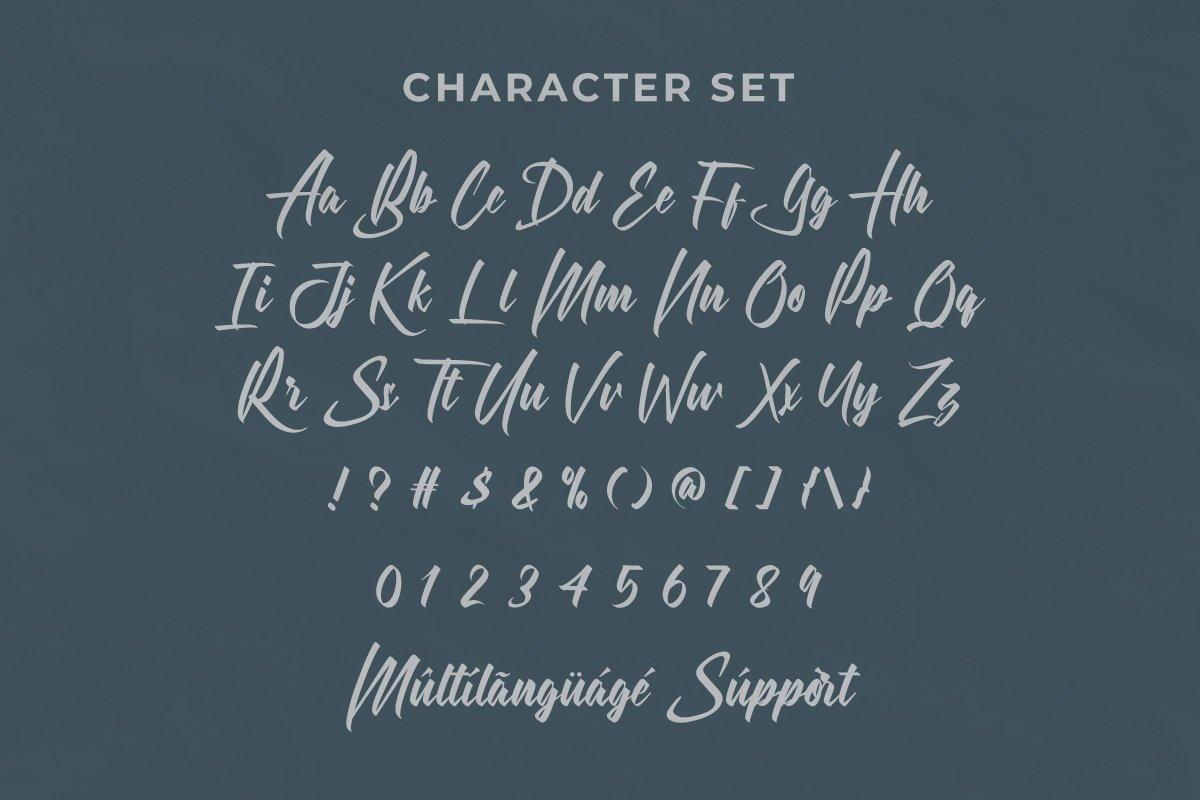 HarsheyBrush Script Font -3