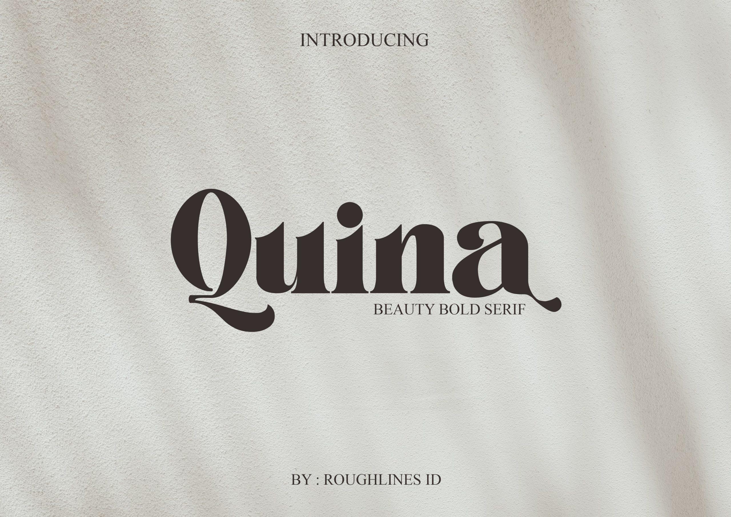Quina Bold Serif Font -1