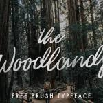 The Woodlands Font Free