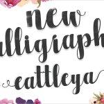 Cattleya Script Font
