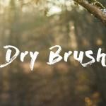Dry Brush Font Free
