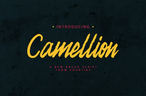Camellion Brush Font Free