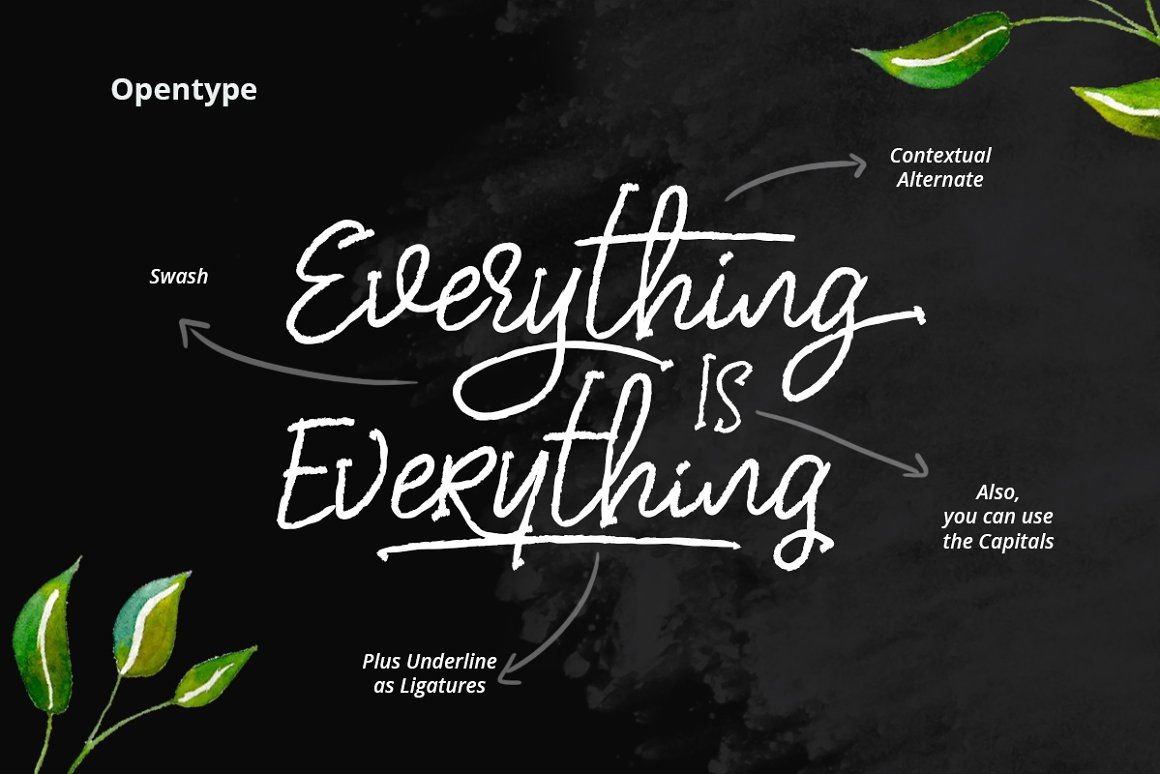 dear-disya-script-font-2