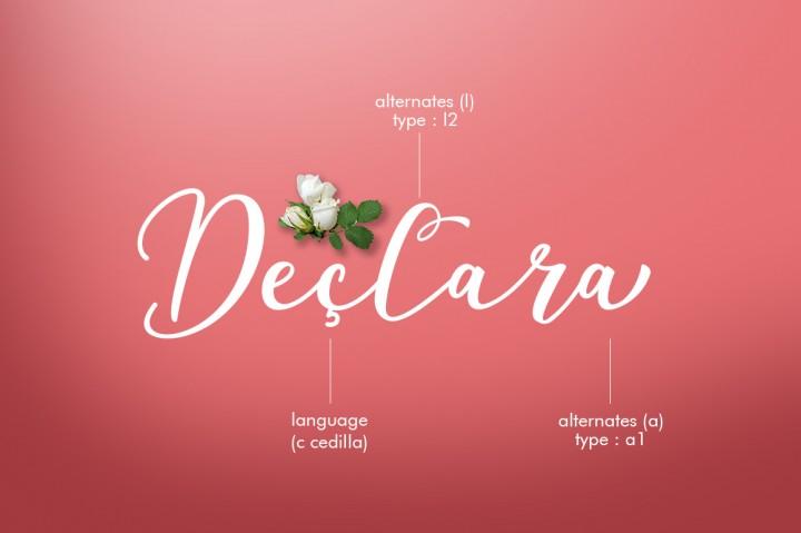 declara-script-font-4