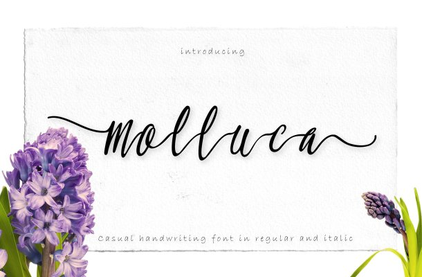 Molluca Script Font Free