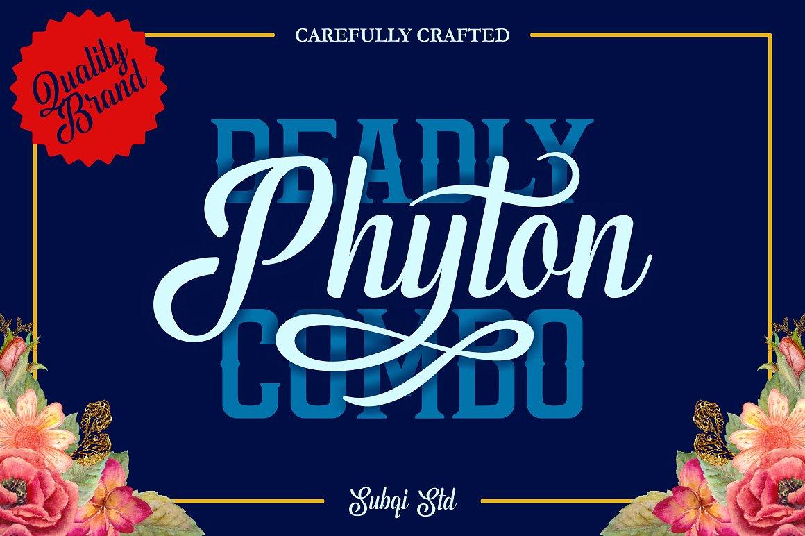 phyton-script-font