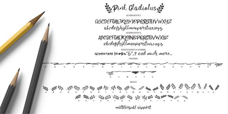 pink-gladiolus-3