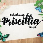 Priscillia Script Font Free