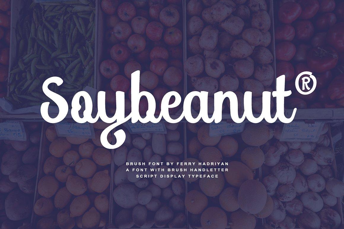 soybeanut-script-font