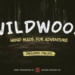 Wildwood Dry Brush Font Free