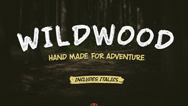 Wildwood Dry Brush Font Free